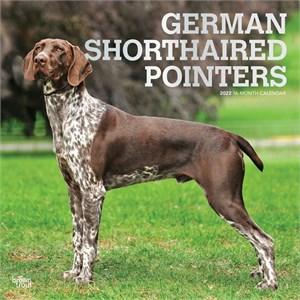  German Shorthaired Pointers Calendar 2013