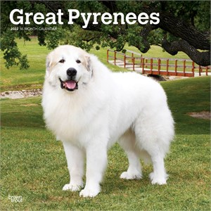 Great Pyrenees Calendar 2013
