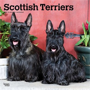  Scottish Terriers Calendar 2013
