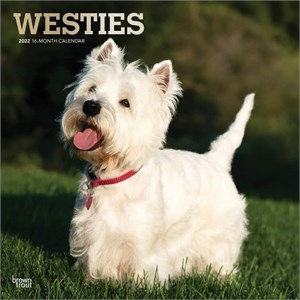 West Highland White Terriers Calendar 2013