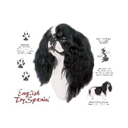 English Toy Spaniel T-Shirt - History Collection