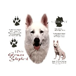 White German Shepherd T-Shirt - History Collection