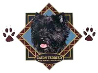 Cairn Terrier T-Shirt - Diamond Collection