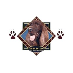 Irish Setter T-Shirt - Diamond Collection