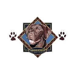 Chocolate Lab T-Shirt - Diamond Collection