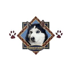 Siberian Husky T-Shirt - Diamond Collection