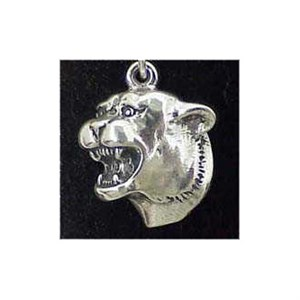 Cougar Charm