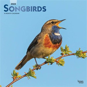 Songbirds Calendar 2014