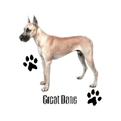 Great Dane T-Shirt - Profiles