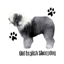 Old English Sheepdog T-Shirt - Profiles