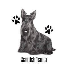 Scottish Terrier T-Shirt - Profiles