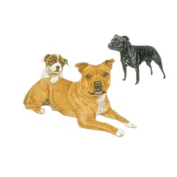 Staffordshire Bull Terrier T-Shirt - Trio of Three
