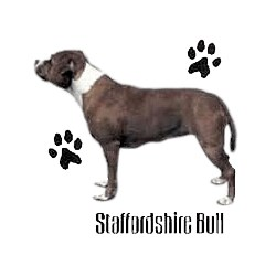 Staffordshire Bull Terrier T-Shirt - Profiles