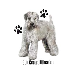 Wheaten Terrier T-Shirt - Profiles