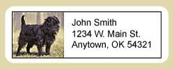 Affenpinscher Address Labels