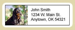 Coonhound Address Labels