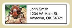 Beetle Address Labels