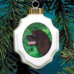 American Water Spaniel Ornament