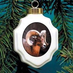 Big Horn Sheep Ornament