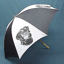 Chesapeake Bay Retriever Umbrella