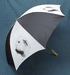 Spinone Italiano Umbrella