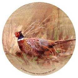 Pheasant Drink Coasters