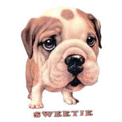 Bulldog T-Shirt - Sweetie