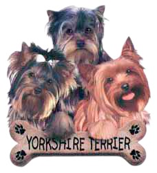 Yorkshire Terrier T-Shirt - Trio of Three