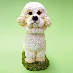 Bichon Frise Bobble Head
