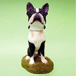 Boston Terrier Bobble Head