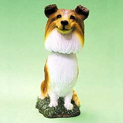 Sheltie Bobble Head