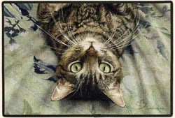 Tabby Cat Floormat