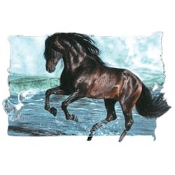 Thoroughbred Horse T-Shirt - Breathtaking Stallion