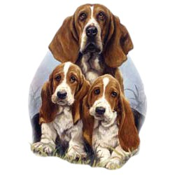 Basset Hound T-Shirt - Linda Picken