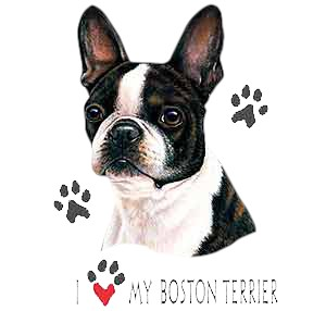Boston Terrier T-Shirt - Linda Picken