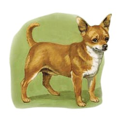 Chihuahua T-Shirt - Linda Picken