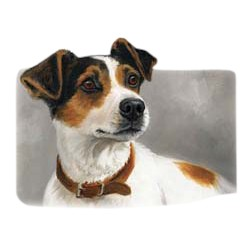 Jack Russell Terrier T-Shirt - Linda Picken