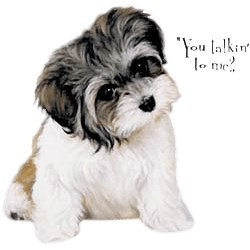 Lhasa Apso T-Shirt - Linda Picken