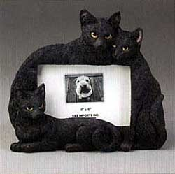 Black Cat Picture Frame