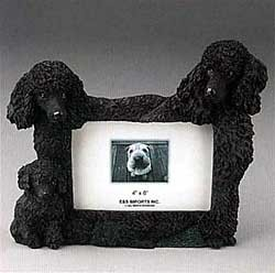 Black Poodle Picture Frame