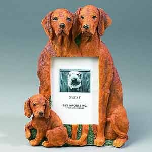 Vizsla Picture Frame