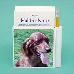 Irish Setter Hold-a-Note