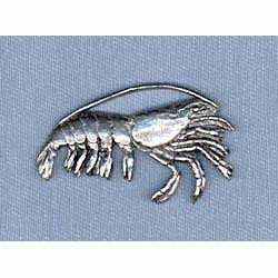 Shrimp Pin