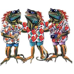 Iguana T-Shirt - Ready to Party