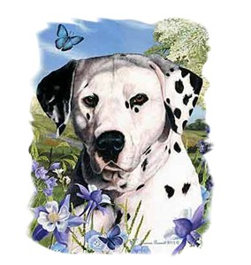 Dalmatian T-Shirt - Flowers