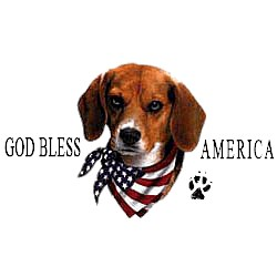 Beagle T-Shirt - American Dog
