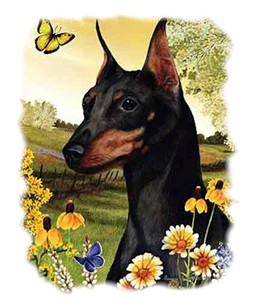Miniature Pinscher T-Shirt - American Dog