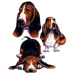 Basset Hound T-Shirt - Collage