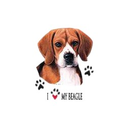 Beagle T-Shirt - Collage