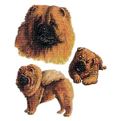Chow Chow T-Shirt - Collage